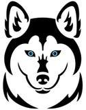 Husky dog tattoo. Illustration of a husky dog tattoo, isolated Stock Photos