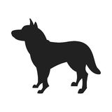 Husky Dog Vector Black Silhouette. Vintage vector image of a black silhouette of a thoroughbred Siberian Husky dog standing straight isolated on white background Royalty Free Stock Photography