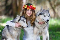 Husky and the girl Royalty Free Stock Image