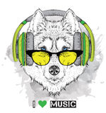 Husky in glasses and headphones. Vector illustration. Stock Photography