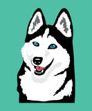 Husky icon Stock Images