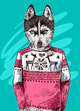 Husky in knitted sweater. Vector illustration for greeting card, poster, or print on clothes. Fashion Style drawing. Hipster Royalty Free Stock Photo