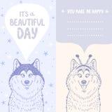 Husky positive card Stock Photography