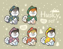 Husky puppies set in colorful raincoats. Cartoon vector illustration. Collection of cute siberian husky puppies in colorful raincoats. Different breeds of dogs Royalty Free Stock Photos
