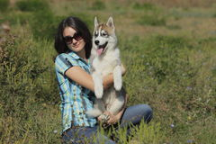 Husky puppy with owner Stock Photo