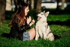 Husky siberiano y ella dueño Imágenes de archivo libres de regalías