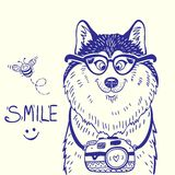 Husky smile  doodle Royalty Free Stock Image