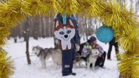 Husky toy hanging stock video footage