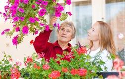 Häusliche Pflege Stockbilder