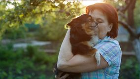 Husmor som lite kramar hunden arkivfilmer