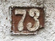 husplatta för grunge 73 Royaltyfria Foton