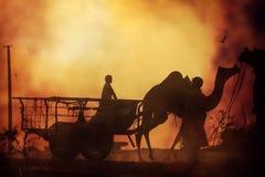 Husvagn av kamel på solnedgången i sandöknen Royaltyfria Bilder