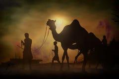 Husvagn av kamel på solnedgången i sandöknen Royaltyfri Fotografi