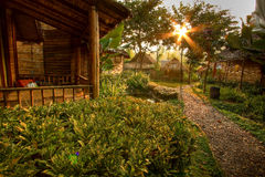 Hut. Country hut and garden at morning Royalty Free Stock Photo