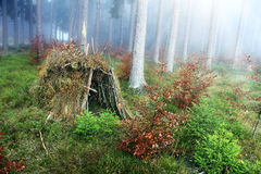 Hut. Lonely hut in the forest with fog Stock Photo