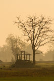 Hut. Old hut in the foggy morning Royalty Free Stock Photo