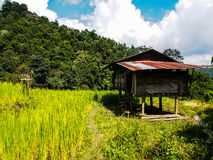 Hut. In green field and moutain Stock Image
