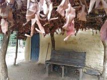 Hut Stock Foto