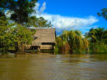 Hut on the Amazon river Royalty Free Stock Photography