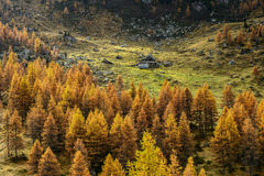 Hut in autumn (North Italy) Royalty Free Stock Photos
