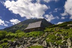 Hut in Bergen Royalty-vrije Stock Afbeelding