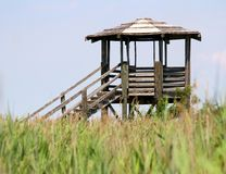 Hut for bird watching and bird life in the midst of the reeds in Royalty Free Stock Images