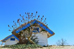 Hut. Blue shack in beautiful country Royalty Free Stock Photos