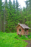 Hut on chicken legs in Dendrology garden in Pereslavl-Zalessky city Royalty Free Stock Photos