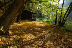 Hut, colour and shadow Royalty Free Stock Photo