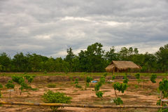 Hut. In the country of Thailand stock photos