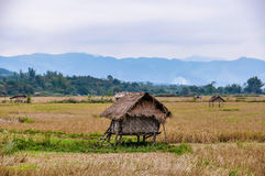 Hut in the countryside in Luang Nam Tha, Laos Stock Images