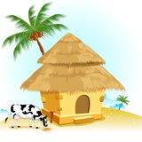 Hut with Cow Royalty Free Stock Photos
