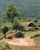 Hut en bomen royalty-vrije stock afbeelding