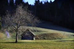Hut en regenboog Stock Foto