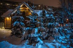 Hut en struiken met sneeuwhigh-rise de bouw bij nacht Royalty-vrije Stock Fotografie