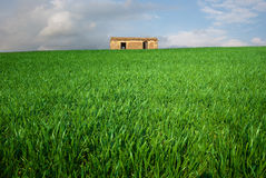 Hut in farm field Stock Images