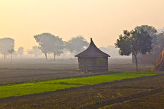 Hut of farmer in morning fog Stock Photo