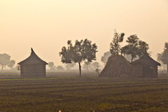 Hut of farmer in morning fog Stock Photography