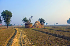 Hut of farmer in morning fog Royalty Free Stock Image