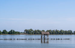 Hut and fence in the river. Near mangrove forest Stock Image