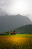 Vietnamese Hut in Field Stock Photography