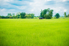 Hut in the field Royalty Free Stock Photo
