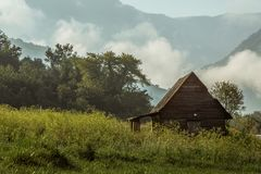 Hut in the foggy forest royalty free stock photos