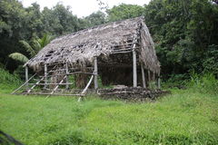 Hut. In Forest maui hawaii, very good for any kind of manipulation Stock Photography