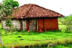 Hut, Grass, House, Cottage