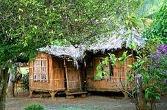 Hut In Hawaii Royalty Free Stock Image
