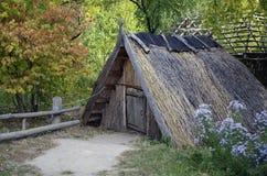 Hut in het dorp Stock Foto