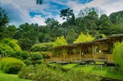 Hut in het park Stock Foto's