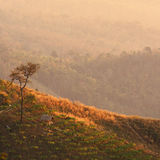 A hut on a hill Royalty Free Stock Photography