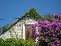 Hut In Flowers Royalty Free Stock Images